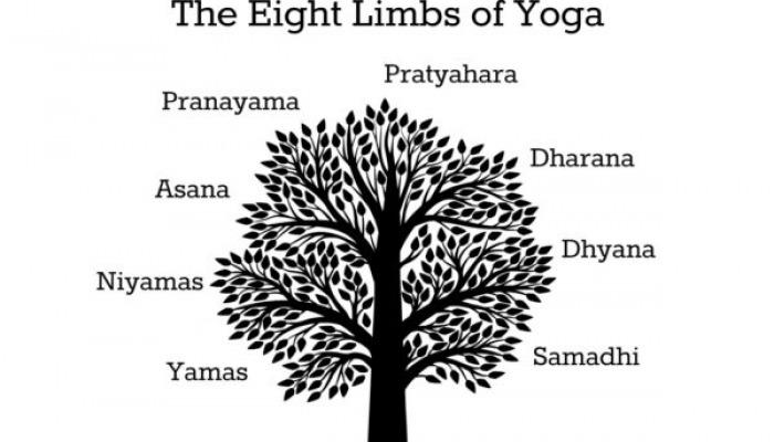 Eight Limbs of Yoga Image | TheYogaChick.com