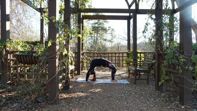 Wheel_Pose_Yoga